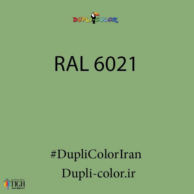 اسپری رال 6021 دوپلی کالر