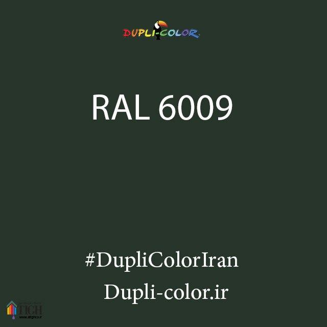 اسپری رال 6009 دوپلی کالر