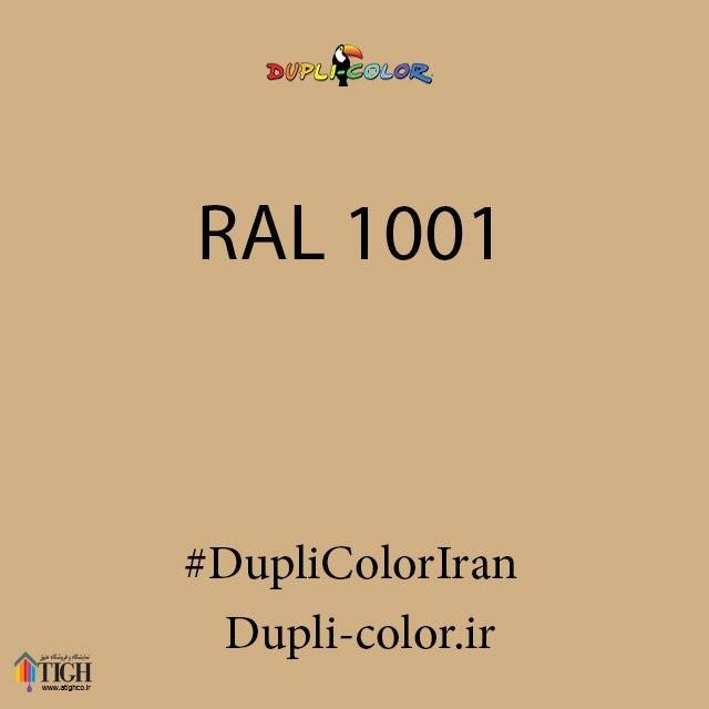 اسپری رال 1001 دوپلی کالر