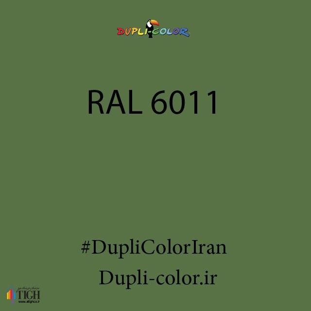 اسپری رال 6011 دوپلی کالر