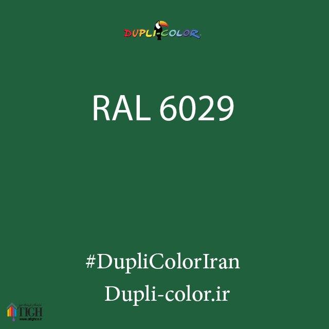 اسپری رال 6029 دوپلی کالر