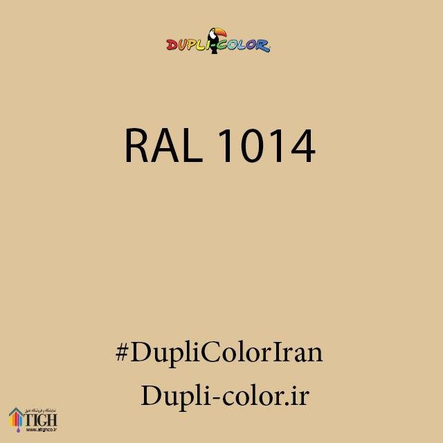 اسپری رال 1014 دوپلی کالر